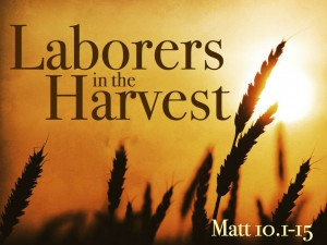 laborers for the harvest