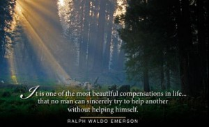 emerson quote forest