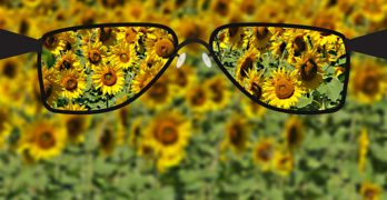 Healthy Blindness